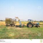 Cortar Hierba Aplique Tractor
