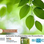 Empresas Que Apliquen Productos Fitosanitarios En Alicante